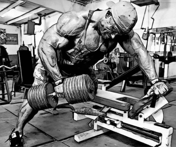 Когда лучше всего растут мышцы?