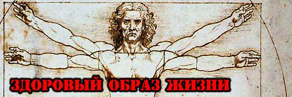 ЗДОРОВЫЙ ОБРАЗ ЖИЗНИ - Денис Борисов