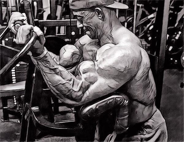 упражнения не меняют ФОРМУ мышц, а только их размер