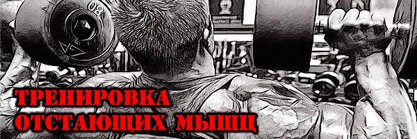 СПЕЦИАЛИЗАЦИЯ: Как Убрать Отставание? - Денис Борисов
