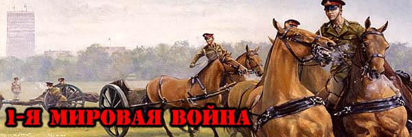1-я МИРОВАЯ ВОЙНА - Денис Борисов