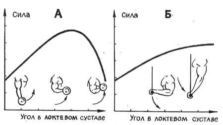Зависимость силовых показателей мышц-разгибателей ног от угла в наклонном суставе