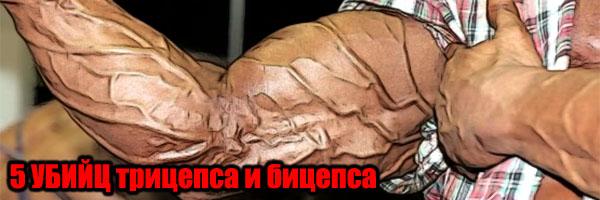 5-ть УБИЙЦ Бицепса и Трицепса (для массивных рук) - Денис Борисов