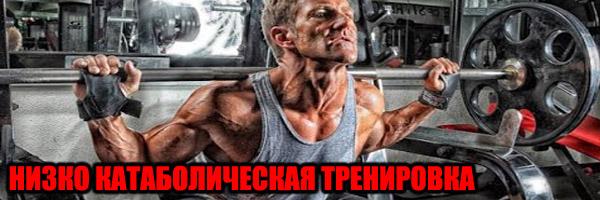 НИЗКО КАТАБОЛИЧЕСКАЯ ТРЕНИРОВКА - Денис Борисов