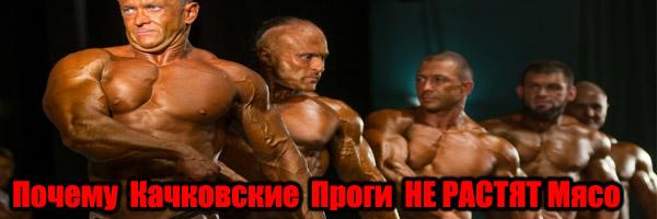 Почему Качковские Проги НЕ РАСТЯТ Мышцы - Денис Борисов
