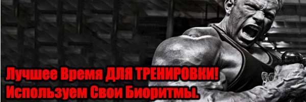 Лучшее Время Для Тренировки в Течении Дня - Денис Борисов