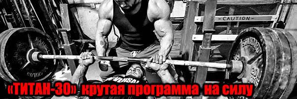 «Титан-30» – палю крутую программу тренировки на силу и скорость - Денис Борисов