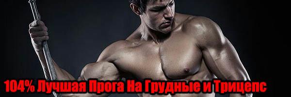 Лучшая Программа Тренировок На Грудные и Трицепс - Денис Борисов