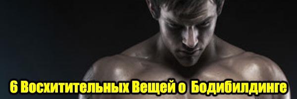 6 Восхитительных Вещей о Кочках и Бодибилдинге - Денис Борисов
