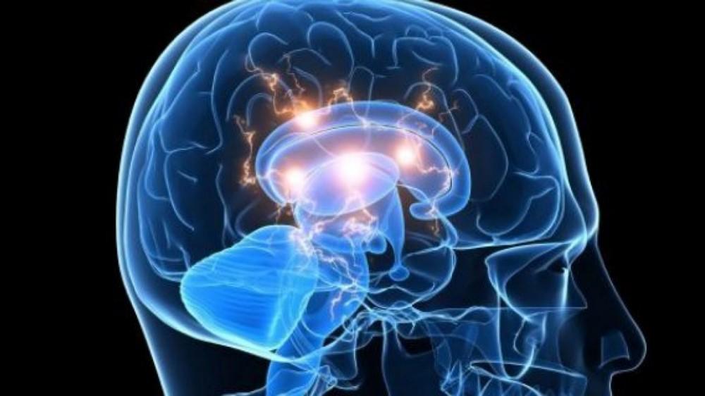 Ускоритель памяти. Как быстро запомнить все. Интересное исследование - Денис Борисов