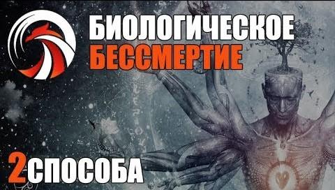 Биологическое Бессмертие: Как Активировать - Денис Борисов