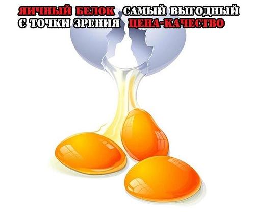 яичный белок самый выгодный с точки зрения цена-качество