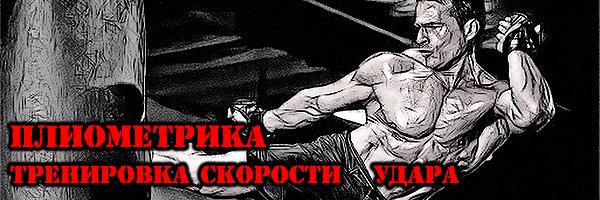Тренировка СКОРОСТИ УДАРА (ПЛИОМЕТРИКА) - Денис Борисов