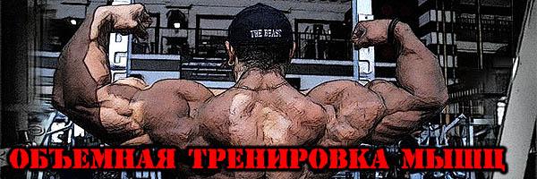 ОБЪЕМНАЯ тренировка мышц (суть культуризма) - Денис Борисов