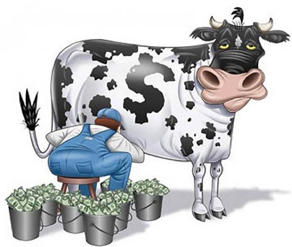 денежная корова