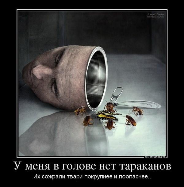 у меня в голове нет тараканов. Их сожрали твари покрупнее и поопаснее..