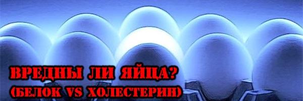 Вредны ли ЯЙЦА? (Белок VS Холестерин) - Денис Борисов