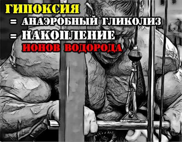 ГИПОКСИЯ = АНАЭРОБНЫЙ ГЛИКОЛИЗ = накопление Ионов Водорода