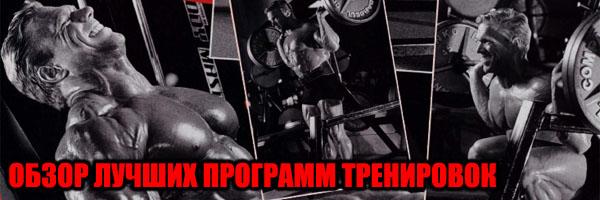 ОБЗОР Лучших Программ Тренировок - Денис Борисов
