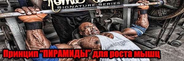 """Принцип """"ПИРАМИДЫ"""" для роста мышц - Денис Борисов"""