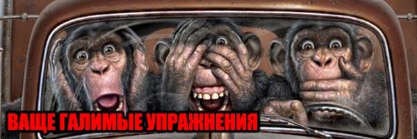 """Ваще """"Галимые"""" Упражнения - Денис Борисов"""