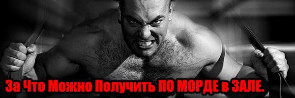За Что Можно Получить По Морде В Зале - Денис Борисов