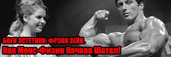 БОГИ ЭСТЕТИКИ: ФРЭНК ЗЕЙН - Денис Борисов