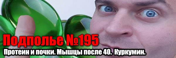 сохранение мышц после 40, протеин и почки, биодоступность куркумина - Денис Борисов(подполье №195)