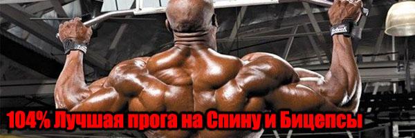 Лучшая Программа Тренировок На Спину и Бицепсы - Денис Борисов