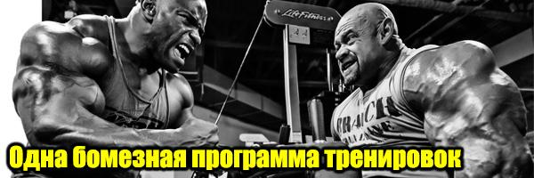 Одна бомбезная программа тренировок (хватит страдать - пора качать) - Денис Борисов