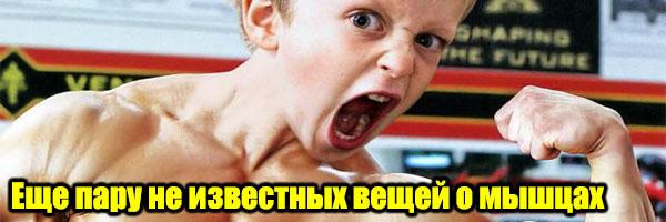 Пару Вещей Про Рост Мышц, о Которых Ты Не Знаешь - Денис Борисов